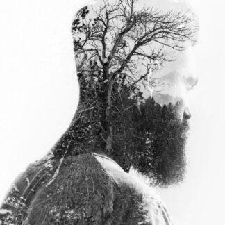 Los conciertos del frío